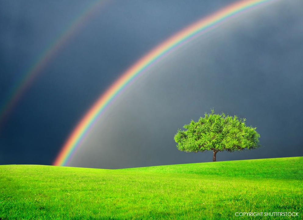 Wednesday Worship Double Rainbow Holy Just Love